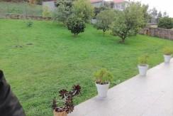 Jardín (3)